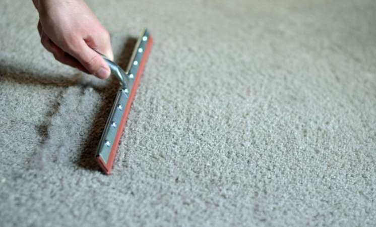 http://cdn-media-2.lifehack.org/wp-content/files/2014/08/19carpet.jpg