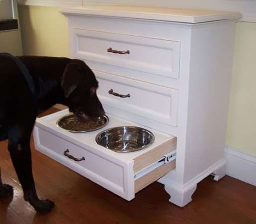 http://freshome.com/2011/11/29/bailey-pet-furniture-with-hidden-storage-crazy-or-practical/