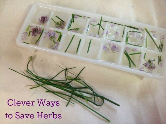 http://www.hackthelife.net/home-improvements/top-20-clever-and-simple-gardening-hacks/